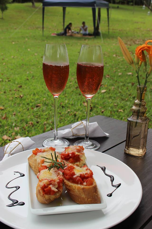 wine-garden-miolo