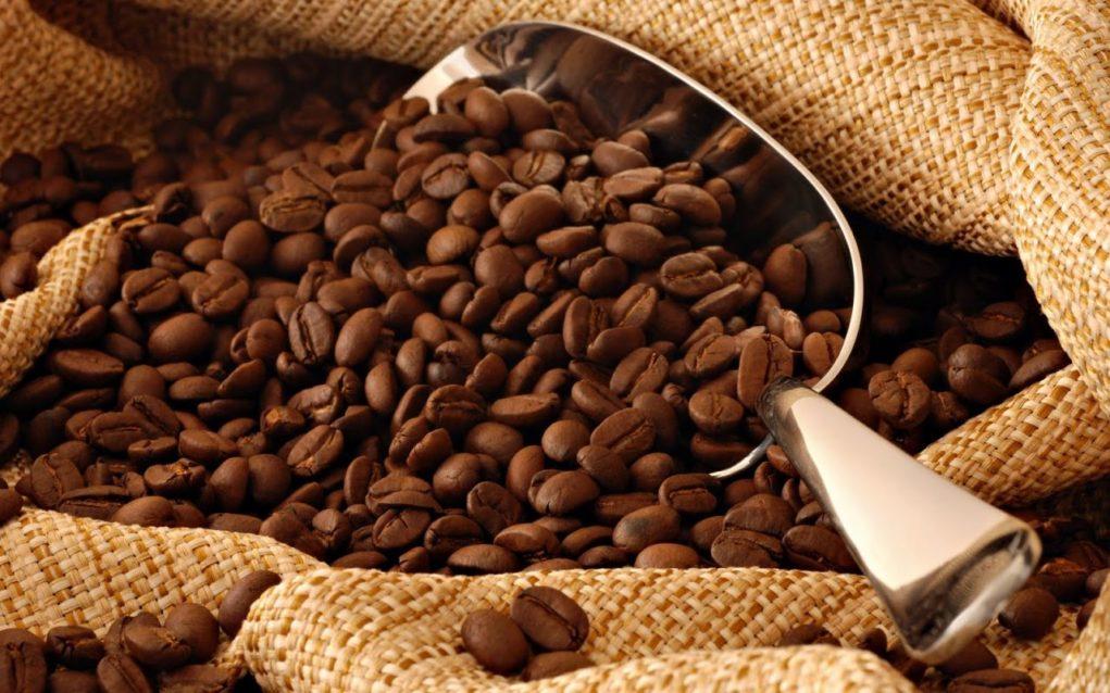 cafe_toplist2