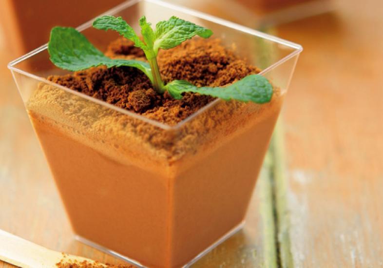 creme-de-chocolate-com-hortela