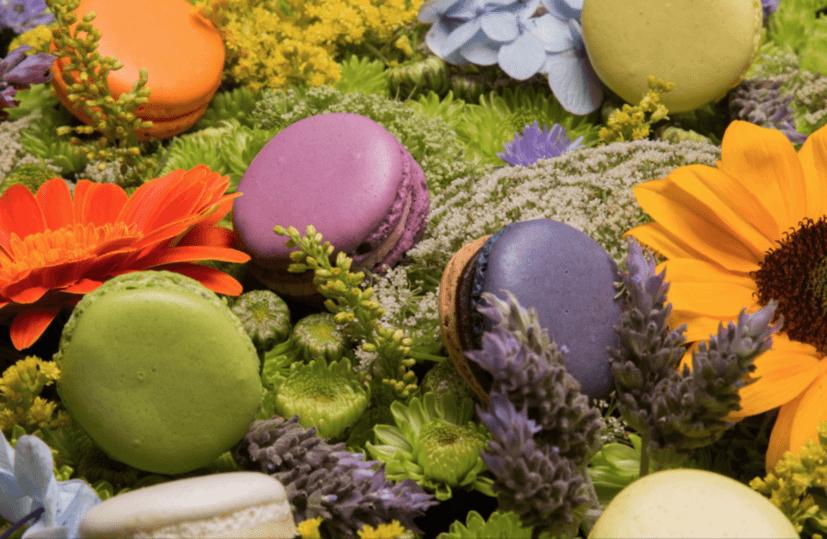Tradicionais Macarons. Foto: Arthur Delecolle.