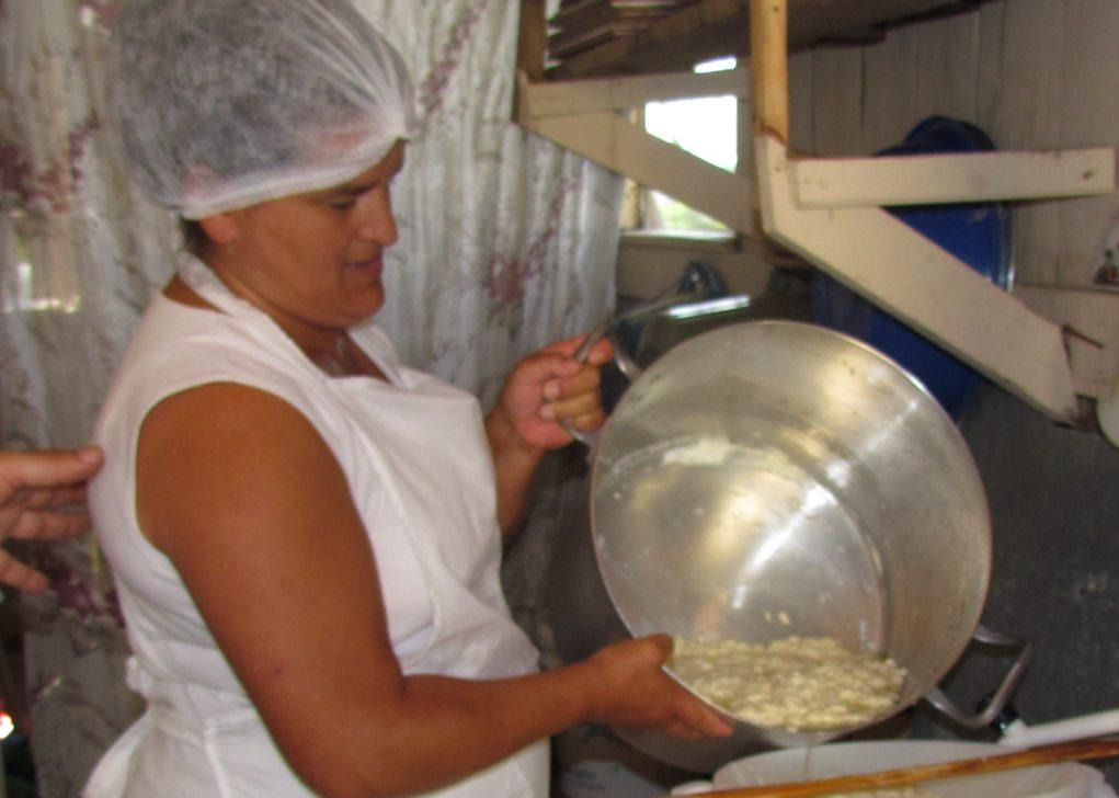 Produção do Queijo Artesanal Serrano é feita por pequenos agricultores. Crédito: Epagri