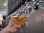 copo cerveja ipa
