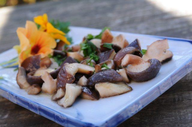 cogumelos refogados