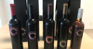 vinhos vinificação em grupo