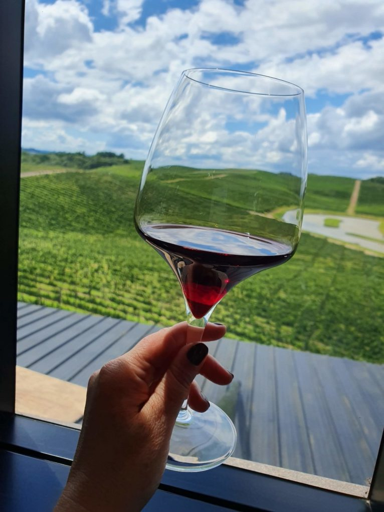 taça de vinho merlot luiz argenta