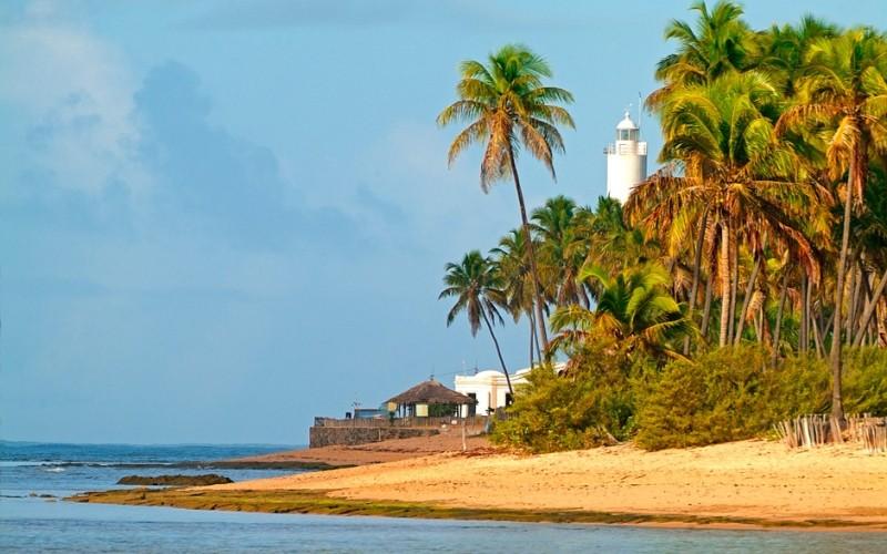 """Conheça a Praia do Forte, a """"polinésia brasileira"""", e seus encantos culinários"""