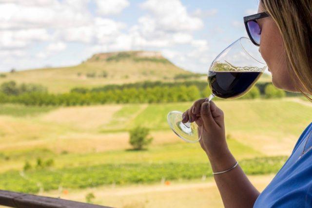 Campanha Gaúcha ganha Indicação Geográfica para vinhos e espumantes
